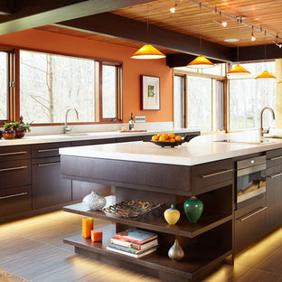Contemporary kitchen photos - Example of a trendy kitchen design in New York with an undermount sink, flat-panel cabinets, dark wood cabinets and an island