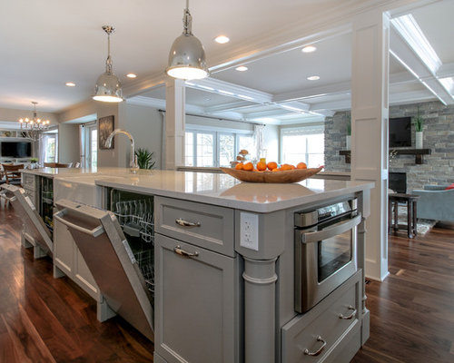 Best Double Dishwasher Design Ideas & Remodel Pictures | Houzz