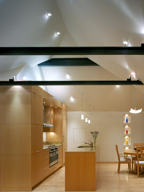 lighting for cathedral ceilings. inspiration for a contemporary galley eatin kitchen remodel in san francisco with flat lighting cathedral ceilings