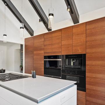 Winter Haven Contemporary Kitchen