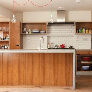 75 Most Popular Midcentury Modern Ireland Kitchen Design Ideas For