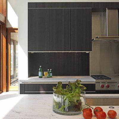 Trendy galley kitchen photo in Baltimore with flat-panel cabinets, dark wood cabinets, metallic backsplash, metal backsplash and stainless steel appliances