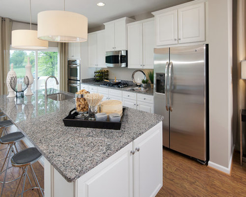 White Raised Panel Cabinets Home Design Ideas, Pictures ...