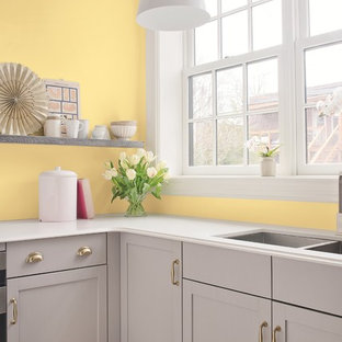 Traditional kitchen remodeling - Kitchen - traditional kitchen idea in Other with shaker cabinets