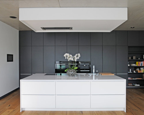 Mid Sized Trendy Medium Tone Wood Floor Open Concept Kitchen Photo In  Dresden With Flat