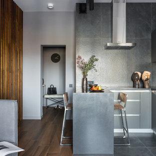 Свежая идея для дизайна: маленькая п-образная кухня-гостиная в современном стиле с плоскими фасадами, серыми фасадами, столешницей из акрилового камня, серым фартуком, фартуком из керамогранитной плитки, техникой из нержавеющей стали, полом из керамогранита, полуостровом, черным полом и черной столешницей - отличное фото интерьера