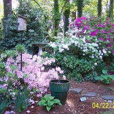 Traditional Landscape by Pamela Foster & Associates, Inc.