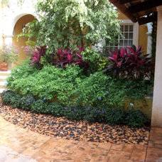 Traditional Landscape by Natural Thangs Landscape Designs