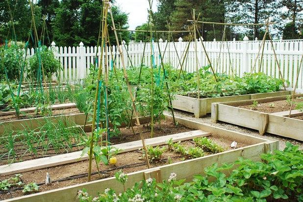 Klassisch Garten by Pennsylvania Landscape & Nursery Association