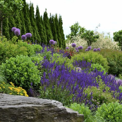 Inspiration for a contemporary hillside landscaping in Other.