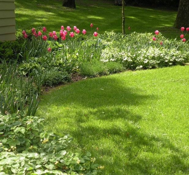 Klassisch Garten by Designing Nature Inc.