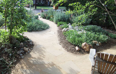 5 Things to Know About Watering Your Native Garden