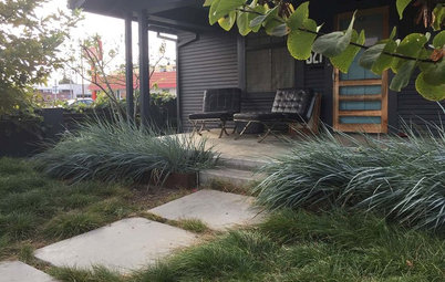 See How 3 California Gardens Hit the Mark With Native Plants