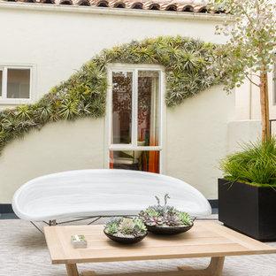 Aménagement d'un jardin vertical méditerranéen.