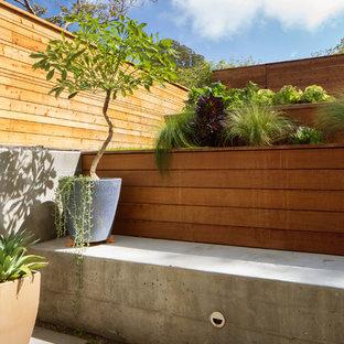 サンフランシスコのモダンスタイルのおしゃれな庭の写真