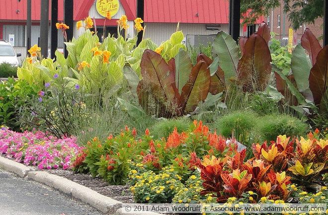 Tropical Landscape by Adam Woodruff + Associates, Garden Artisans