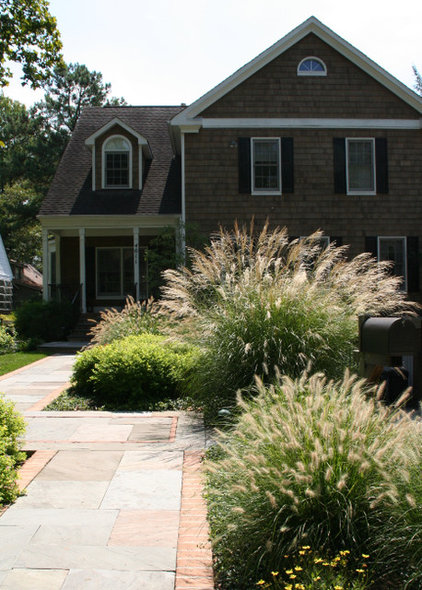 Contemporary Landscape by Carex:  Garden Design by Carolyn Mullet