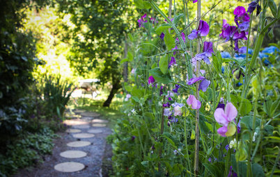 Got Allergies? 9 Plants to Avoid and What to Grow Instead