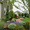 8 Twists on Foundation Plantings