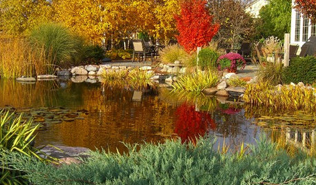 See How 4 Gorgeous Gardens Win With Fall Color and Texture
