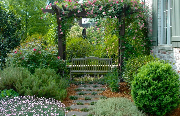 Traditional Landscape by Solow Design Group