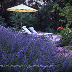 A Rustic New England Stone Wall And Perennial Garden