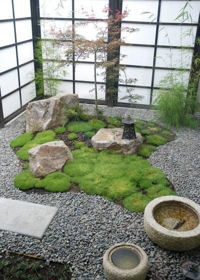Asiatisch Garten by Garden Mentors