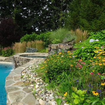 A Lush Backyard Poolscape