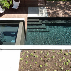 Midcentury Landscape by A Parallel Architecture