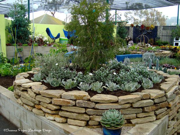 Contemporary Garden by SP Gardens - Susanna Pagan Landscape Design