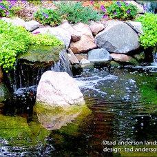 Asian Landscape by Anderson Design / ErosionZ.  Minnesota Landscape.