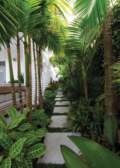 Tropical Garden by Zones Landscaping Specialists