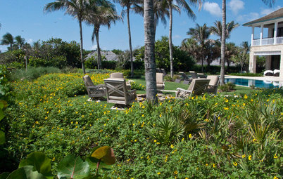 How to Make Your Oceanfront Garden Thrive