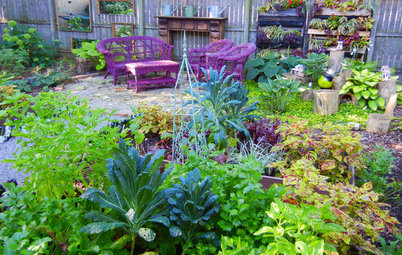 Shades of Vegetable Gardens: Growing Edibles in Less Sun