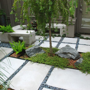 Photo of an asian landscaping in Orlando.
