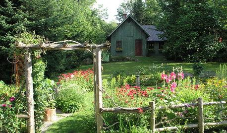In zehn Schritten zum umweltfreundlichen Garten