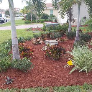 Immagine di un giardino tropicale esposto in pieno sole di medie dimensioni e davanti casa in estate con pacciame