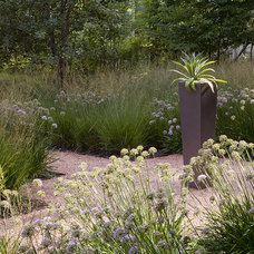 Contemporary Landscape by The Garden Consultants, Inc.
