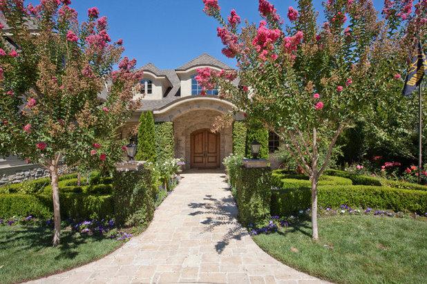 Rboles y arbustos para el dise o de jardines peque os qu planas de exterior son las m s - Arboles bonitos para jardin ...