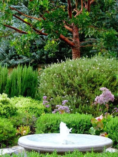 Mediterraneo Giardino by The Aldrich Company - Landscape Design