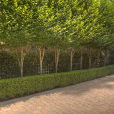 Traditional Landscape by The GreenSeason Group, Inc.