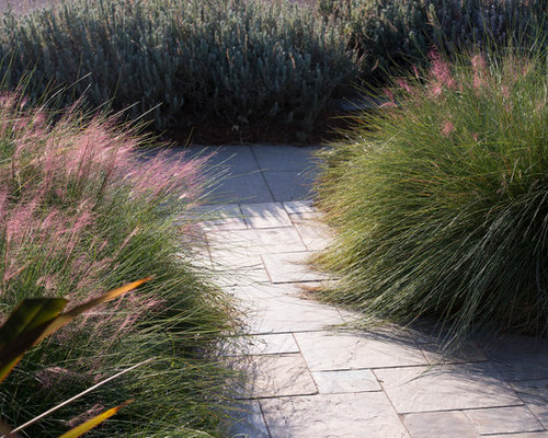 Maintenance Free Yard Ideas Pictures Remodel And Decor