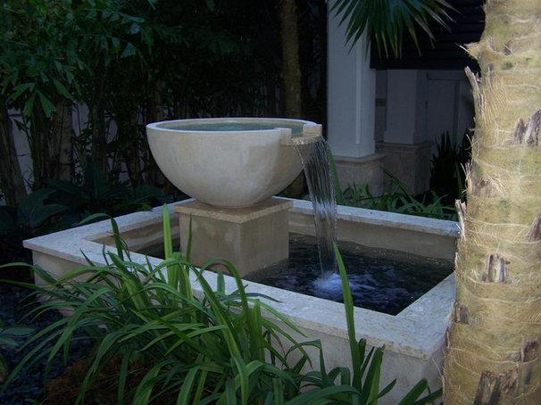 Tropical Landscape by orlando comas, landscape architect.