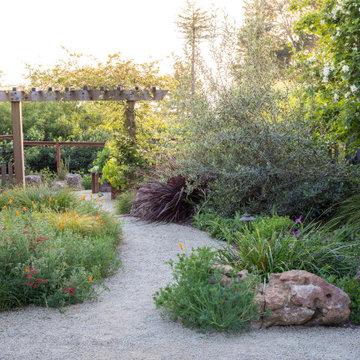 Amazing Berkeley Back Yard