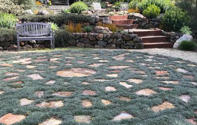 So Long, Lawn: 6 Walkable Ground Covers to Consider