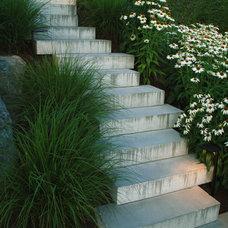 Modern Landscape by Botanica Design