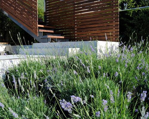Modern vancouver landscaping ideas design photos houzz for Garden design vancouver