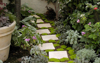 Plants for Your Pathway