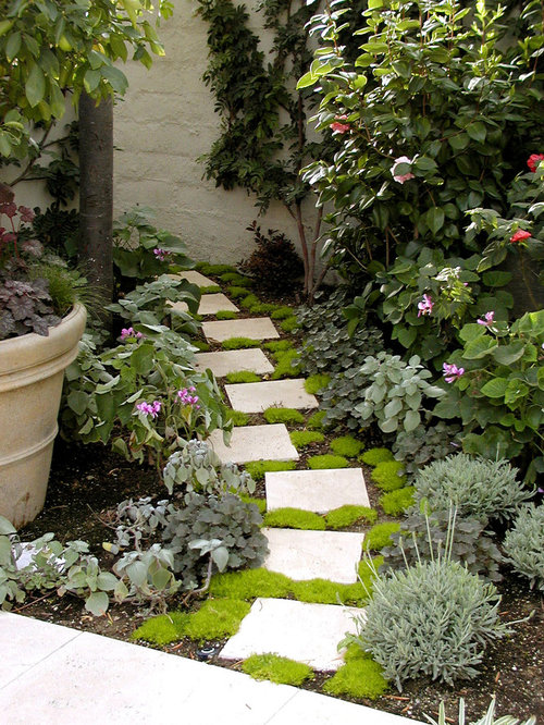 Design Ideas For A Mediterranean Garden In Los Angeles With Natural Stone  Pavers.
