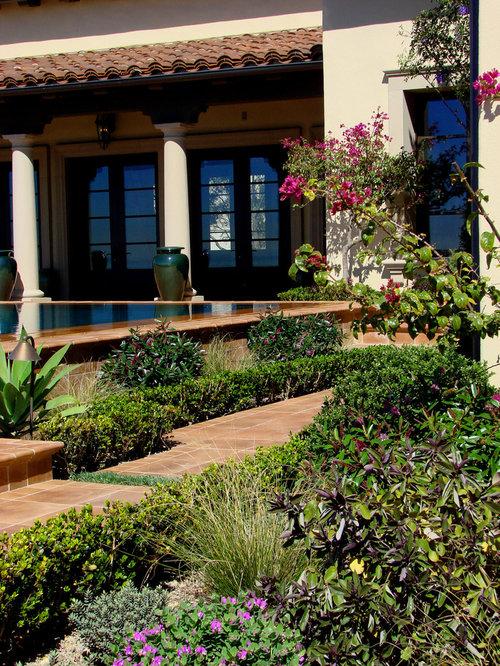 Succulent gardens photos and ideas for Mediterranean courtyard designs